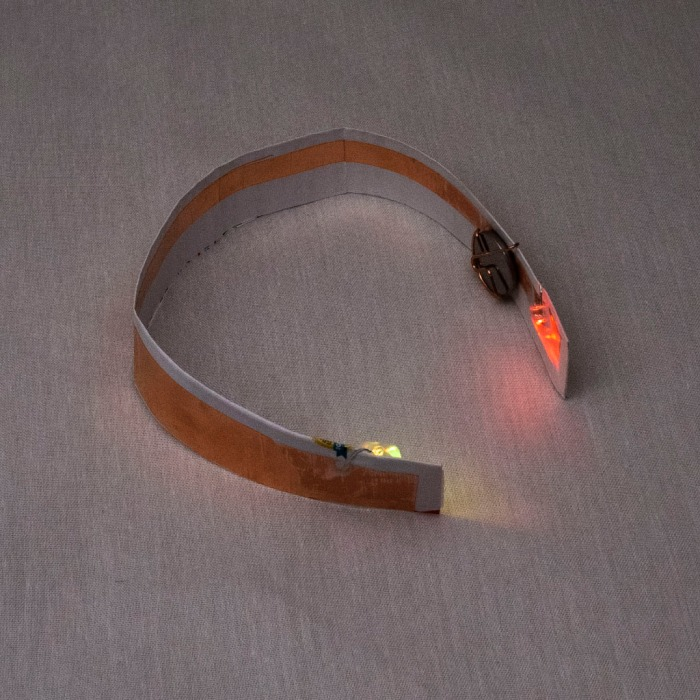 Collar LED blinky final curved.jpg