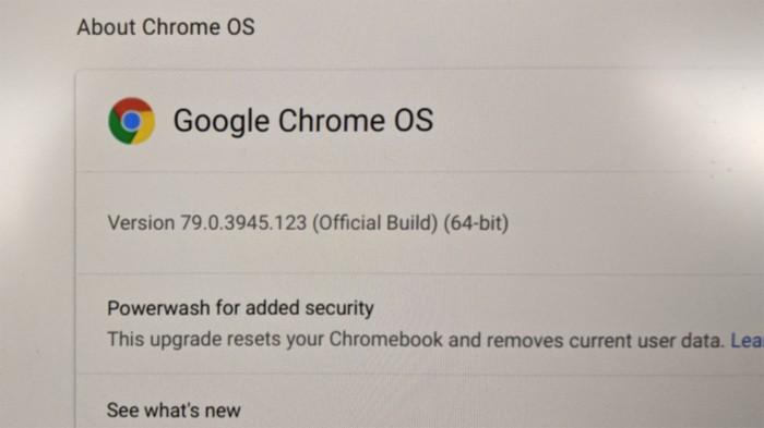 Chromebook 79.0.3945.123